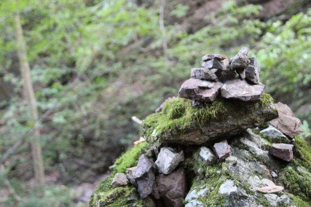 バミューダー島での環境破壊の原因は観光客の石積み